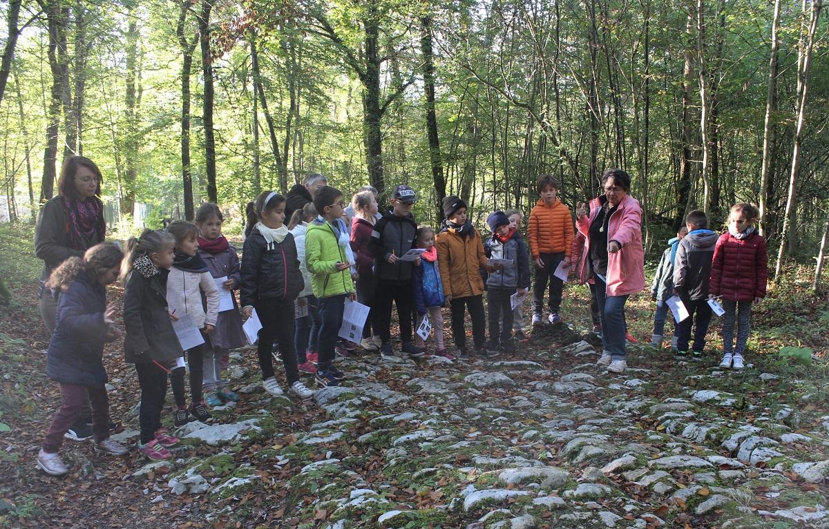 Les élèves découvrent les pierres calcaires